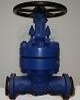 gate valve 1500 lbs bw