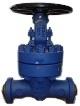 gate valve 900 lbs bw